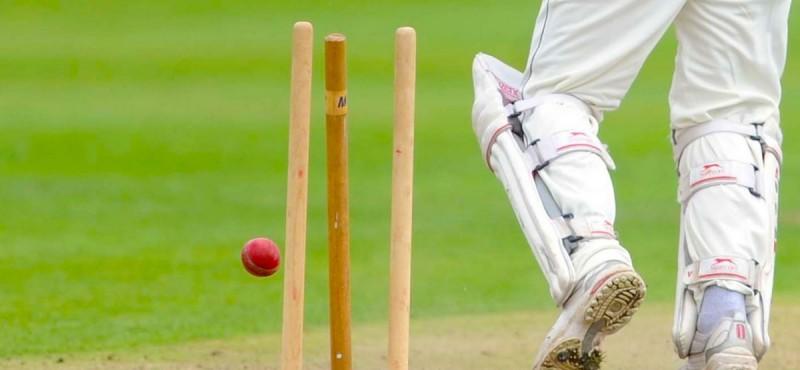 cricket5